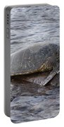 Sea Turtle On Rock Portable Battery Charger
