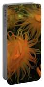 Sea Urchin 12 Portable Battery Charger