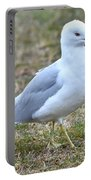 Seagull In Field Portable Battery Charger