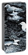 Seagull Trio Portable Battery Charger