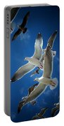 Seagulls Above Portable Battery Charger