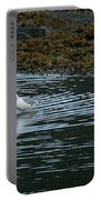 Seagulls-signed-#9360 Portable Battery Charger