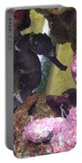 Seahorse3 Portable Battery Charger