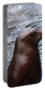 Seal Portable Battery Charger