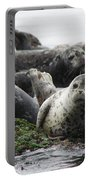 Seal Rock Portable Battery Charger