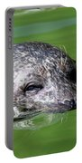 Seal Swimming Portrait Wildlife Scene Portable Battery Charger