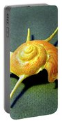 Seashell Guildfordia Yoca Portable Battery Charger