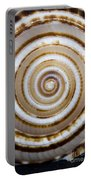 Seashell Spirals Portable Battery Charger