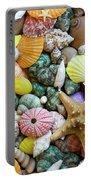 Seashells 3 Portable Battery Charger