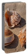 Seashells On The Sand Portable Battery Charger