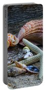 Seashells And Driftwood Portable Battery Charger