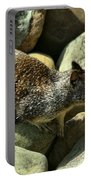 Seaside Ground Squirrel Portable Battery Charger