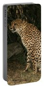 Seated Cheetah Portable Battery Charger