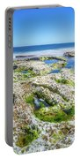 Seaweed And Salt Landscape. Portable Battery Charger by Gary Gillette
