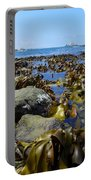 Seaweed Portable Battery Charger