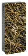 Seaweed On The Coast Of Iceland Portable Battery Charger