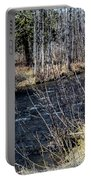 Secluded Brook Portable Battery Charger