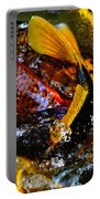 Secrets Of The Wild Koi 2 Portable Battery Charger