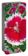 Sedona Dianthus Portable Battery Charger