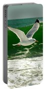 See Gull Portable Battery Charger