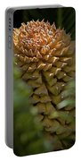 Seed Pod Portable Battery Charger