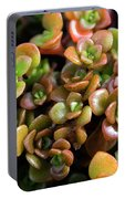 Seeing Succulents Portable Battery Charger