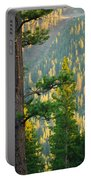 Seeing The Forest Through The Tree Portable Battery Charger