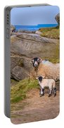 Seep And Lamb Portable Battery Charger