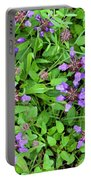 Selfheal In The Lawn Portable Battery Charger