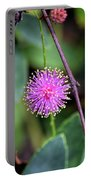 Sensitive Briar Portable Battery Charger