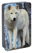 Sentry Wolf Portable Battery Charger
