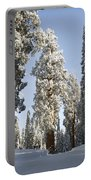 Sequoia National Park 4 Portable Battery Charger