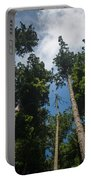 Sequoia Park Redwoods Reaching To The Sky Portable Battery Charger