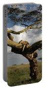 Serengeti Dreams Portable Battery Charger