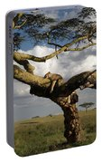 Serengeti Dreams Portable Battery Charger