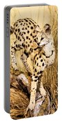 Serval Portable Battery Charger