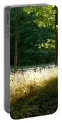Setting Sunlight Portable Battery Charger