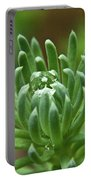 Setum With Crystal Ball Portable Battery Charger