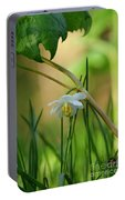 Shaded Mayapple Portable Battery Charger