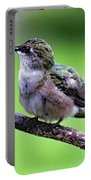 Shades Of Green - Ruby-throated Hummingbird Portable Battery Charger