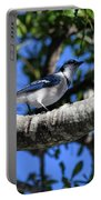 Shadowy Blue Jay Portable Battery Charger