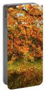 Shady Oak Portable Battery Charger