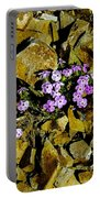 Shale Garden.  Portable Battery Charger
