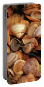 She Sells Sea Shells Portable Battery Charger