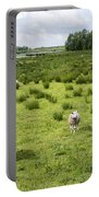 Sheep Animals Portable Battery Charger