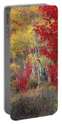 Sheep Canyon In Autumn Portable Battery Charger