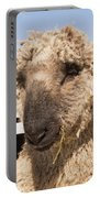 Sheep Face Portable Battery Charger