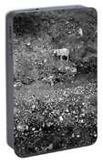 Sheep In Bw Portable Battery Charger