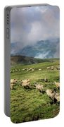 Sheep In Carphatian Mountains Portable Battery Charger