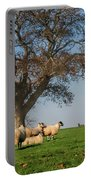 Sheep In Somerset Portable Battery Charger